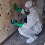 mold 150